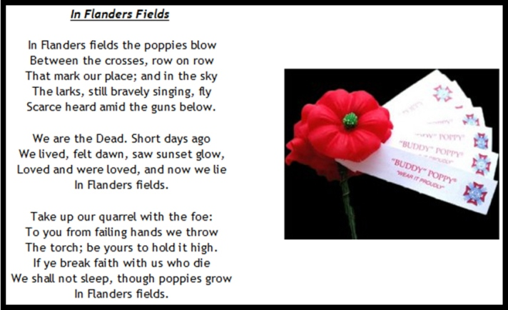 Buddy-Poppy-handout-for-drive